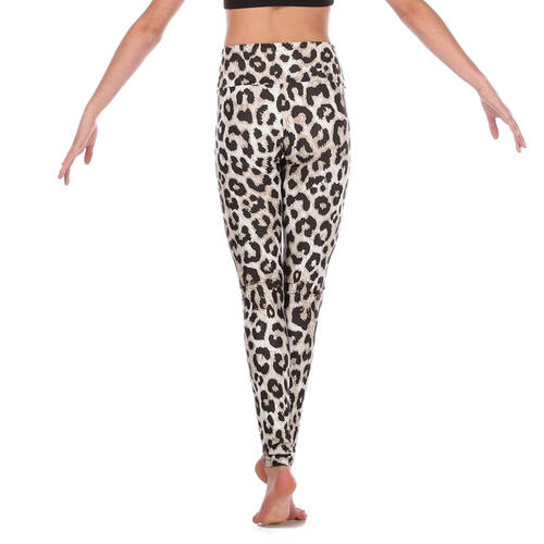 Girls Polk Dot Cheetah Legging : AC1110C