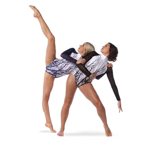 Long Sleeve Mesh Tree Leotard : AC5278