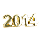 2014 Metal Awards Pin : CL2014