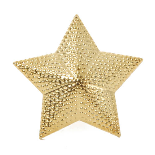 Star Pin : NO95